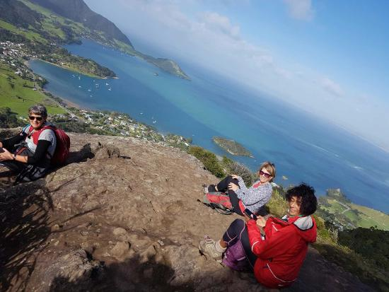 Whangarei, نيوزيلندا: View from Mt Manaia