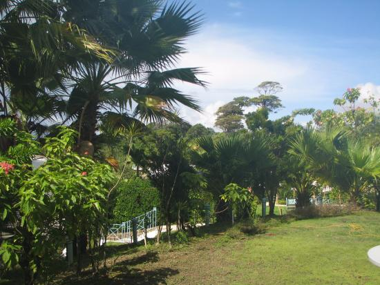 Foto de Salybia Nature Resort & Spa
