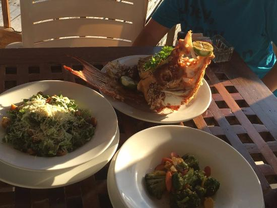 Man-O-War Cay: Hogfish snapper at Dine & Dock