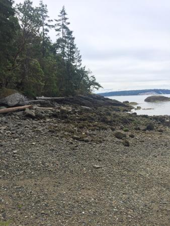 Halfmoon Bay, Canadá: photo4.jpg