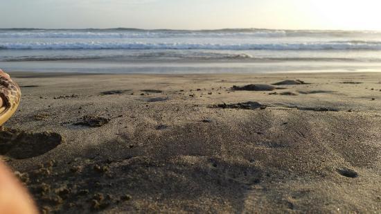 Cerritos Surf Colony: 20160430_192026-1_large.jpg