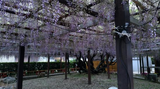 Empuku-ji Temple