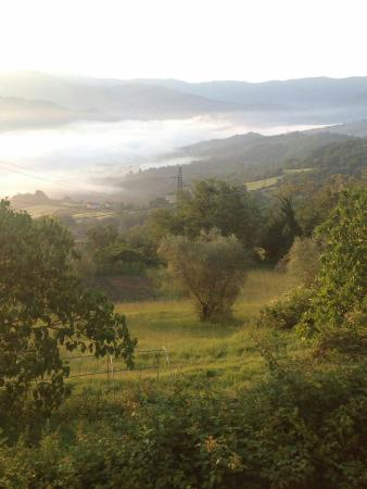 Vicchio, Italia: IMG-20160521-WA0000_large.jpg