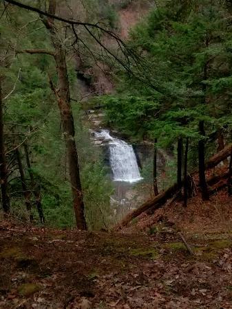 Dansville, estado de Nueva York: A chilly day is perfect for exploring waterfalls in an empty park.  Barnstormer Excursions