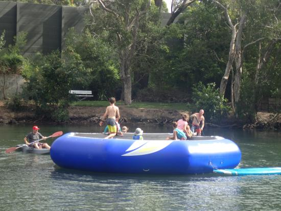 Tweed Heads, Australia: Big jumping pontoon - great fun