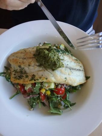 Tewantin, Australien: Grilled barramundi with brown rice, quinoa, baby tomatoes, rocket and lots of other things.