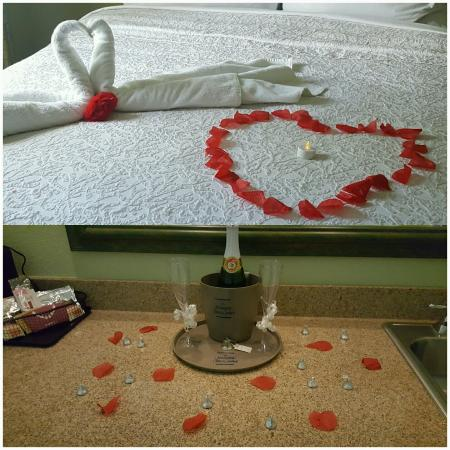 奧蘭多南湖納維漢普頓酒店及套房照片