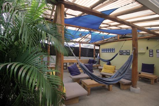 Blue Trailz Hostel & Surf Camp: Common Area