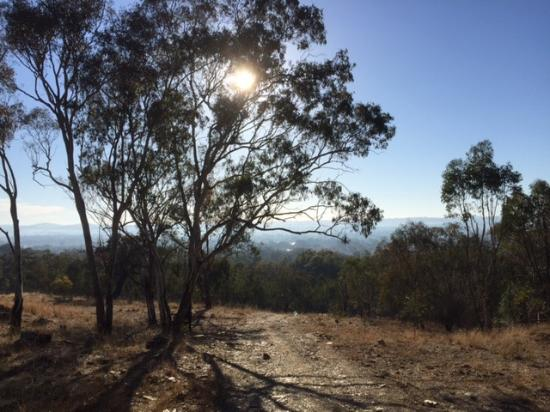 Cootamundra, Австралия: Beautiful view from this walking track