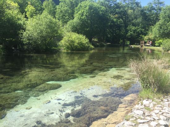 il laghetto foto di parco naturale la sponga canistro
