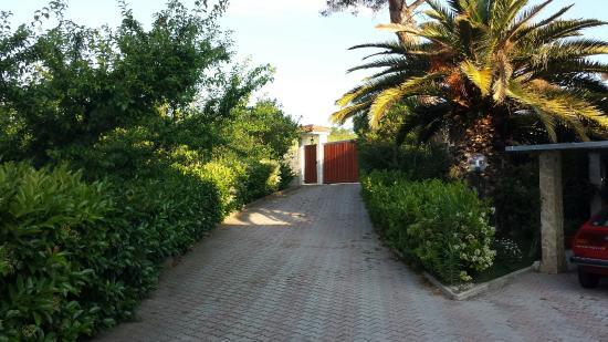 Il Casale di Rodolfo: 20160521_072020_large.jpg