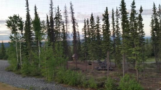 Copper Center, AK: Mountain view room