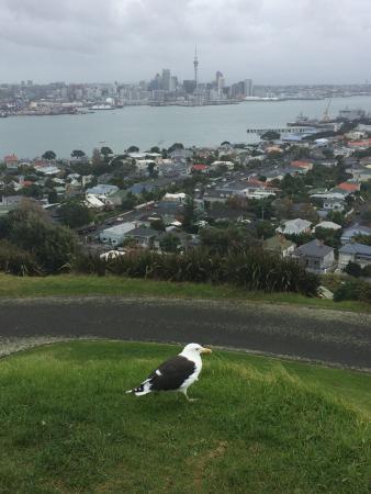 Devonport, Yeni Zelanda: photo1.jpg