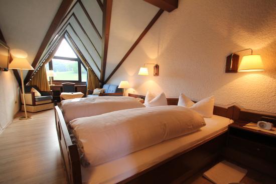 Grasellenbach, ألمانيا: Zimmer