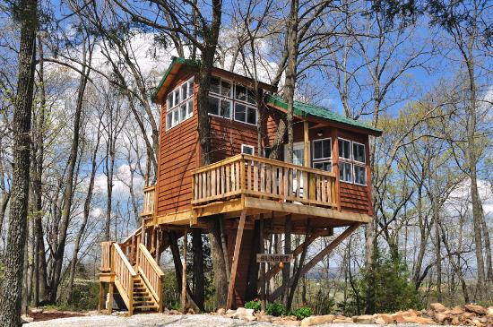 The Cottage: The Sunset Tree House
