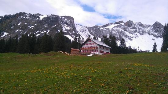 Alpengasthaus Edelweiss Photo