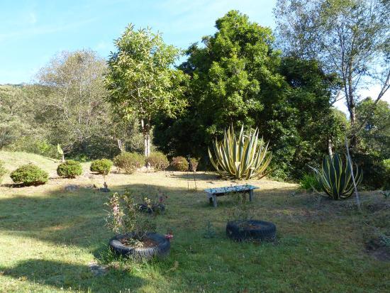 San Gerardo de Dota, Costa Rica: le jardin