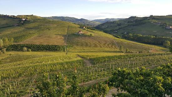 Canelli, Italia: 20160523_200228_large.jpg