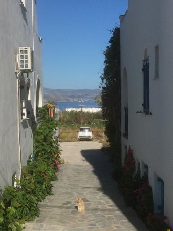 Agia Anna, Hellas: photo5.jpg