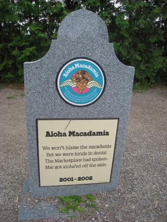 Waterbury, VT: RIP Aloha Macadamia
