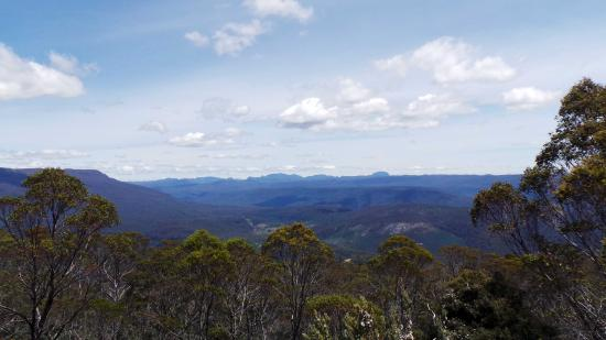Mayberry, Australia: View at Fisher River Lookout en route to Devil's Gullet.