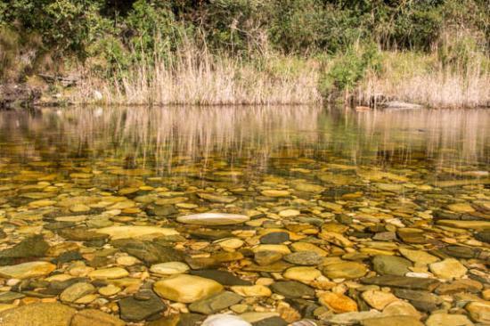 Wilderness, Sudáfrica: Crystal clear waters