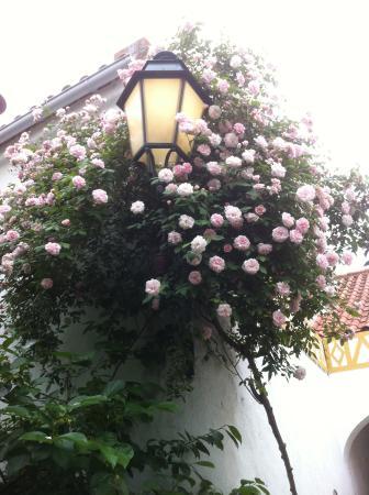Patio das Flores e Belavista