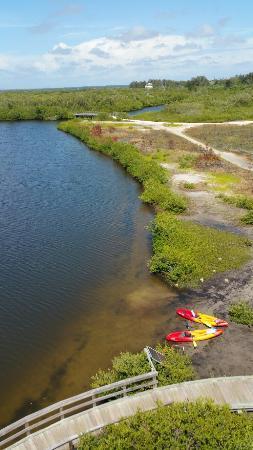 Cortez, FL: 20160519_153028_large.jpg