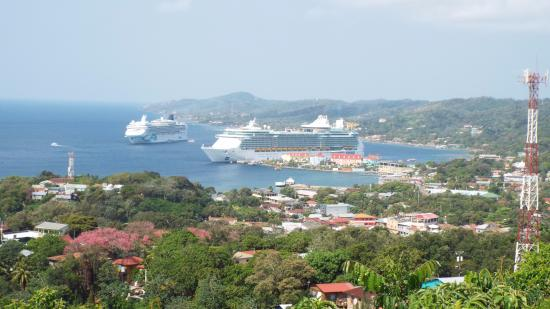 Roatan Private Trips And Tours