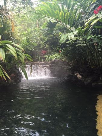 Tabacon Grand Spa Thermal Resort: Shangri La