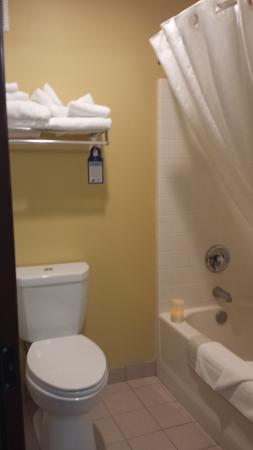 Chehalis, WA: clean bathroom with plenty of big thirsty towels