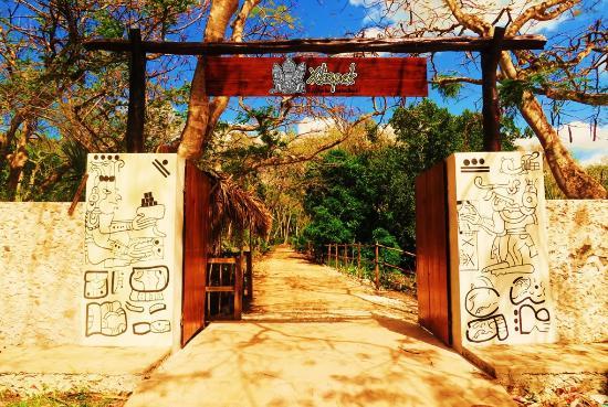 Xkopek Parque Apicola