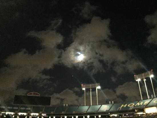Όκλαντ, Καλιφόρνια: photo0.jpg