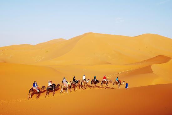 沙漠之梦旅行社