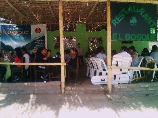 Pacasmayo, Peru: Visita de estudiantes de UNT al Bosque el Cañoncillo