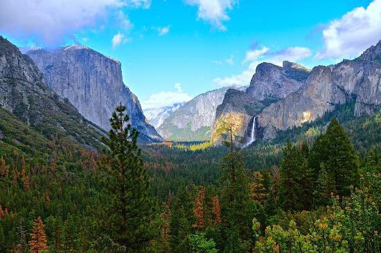 Fish Camp, CA: 2 miles from Yosemite entrance!