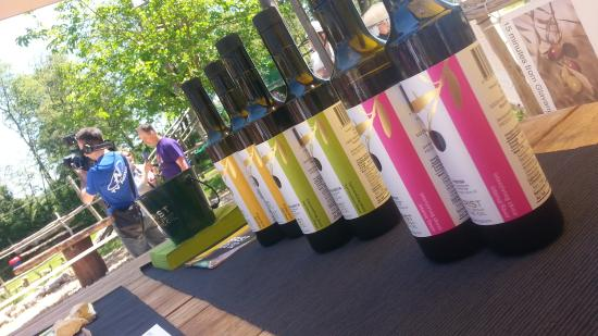 Vodnjan, Croacia: A day out at Glavani Park presenting our oils and having fun.