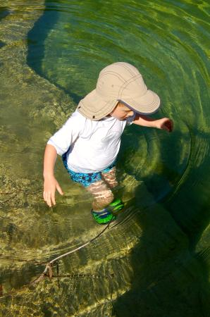 Wimberley Shade Ranch: Perfect for Kids