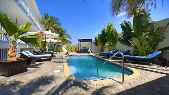Dolphin Suites: Our pool area