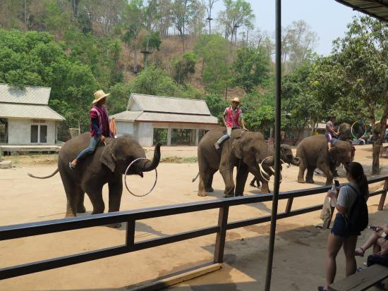 Chokchai Tour Chiang Mai - Day Tours