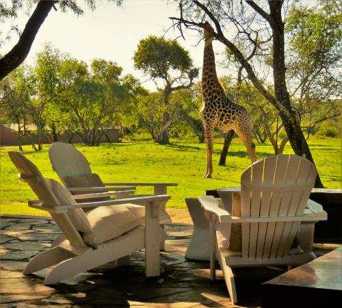 Waterberg, Sudáfrica: Lounge terrace