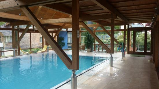 Hollweger: Indoor pool area .. suspect that in the summer they might open the sliding windows or doors.