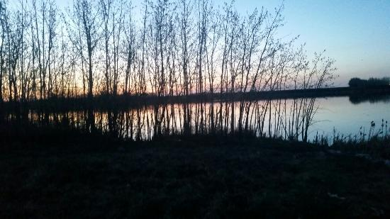 Leduc, Canada: Telford Lake