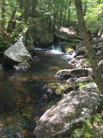 McClellan Trail