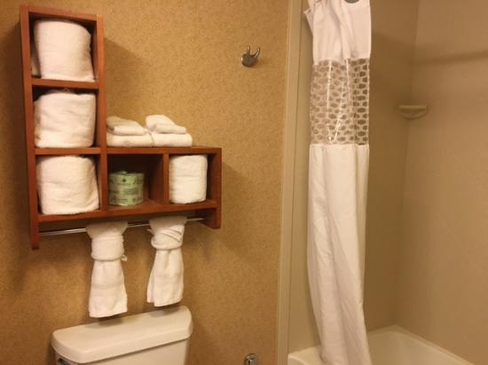 Hampton Inn and Suites Chicago-Libertyville: Bathroom