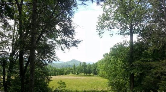 Cramer's Creekside Cabins : Front porch view
