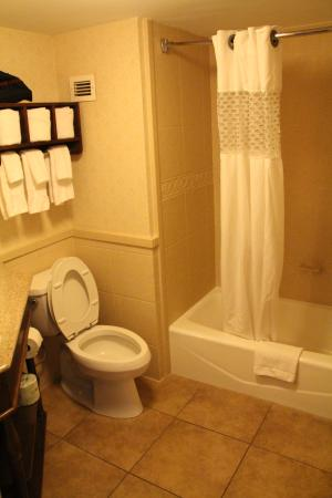 Hampton Inn Savannah Historic District 129 ̶1̶5̶1̶