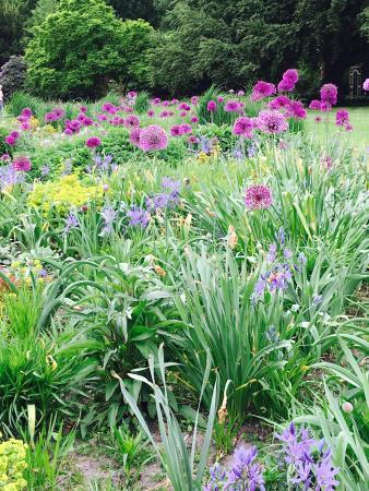 Gutersloh, ألمانيا: Botanische tuin in mei