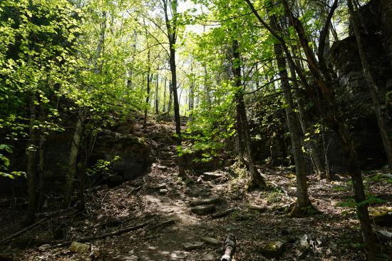 Manitoulin Island, Canadá: First of two brief steep (blue trail)