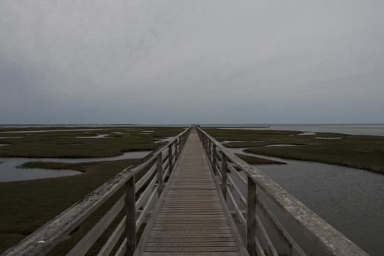 Yarmouth Port, MA: The walk